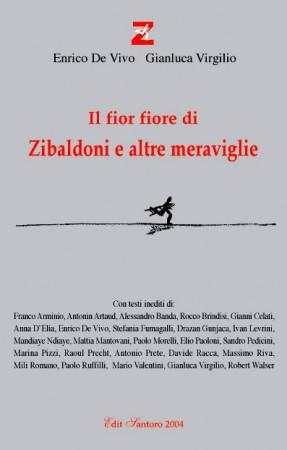 copertina_libro_zib