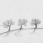 I manifesti di Zibaldoni