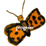 cropped-farfalla_logo_1