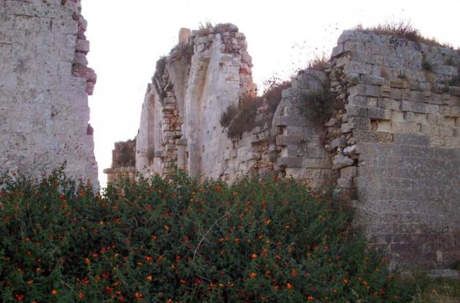 Otranto - Ruderi dell'Abbazia di Casole