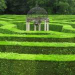 Maze_Garden